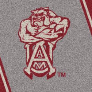"Alabama A&M 3'10"" x 5'4""-0"