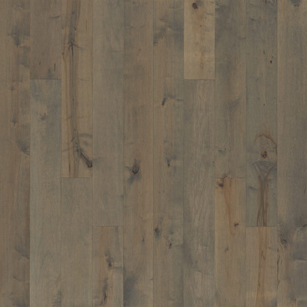 "Maple Ventura FMH Sand 7.5"" Hallmark Floors Flooring - Castle"